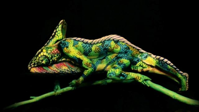 Body painting animali camaleonte